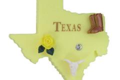 Texas - 91028