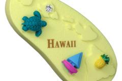 Hawaii - 91050