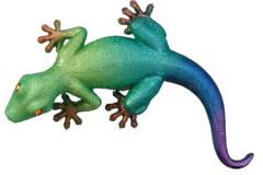 Lizard - 50023