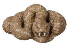 Rattlesnake - 50081