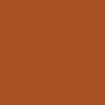 Bear/Orange